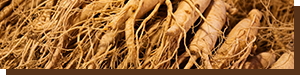 ingredient-ginseng